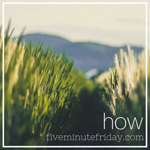How - 31 Days of Five Minute Free Writes
