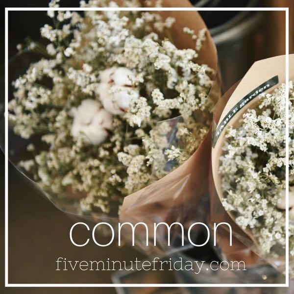 Common - 31 Days of Five Minute Free Writes